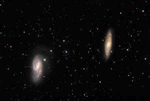 M65 and M66