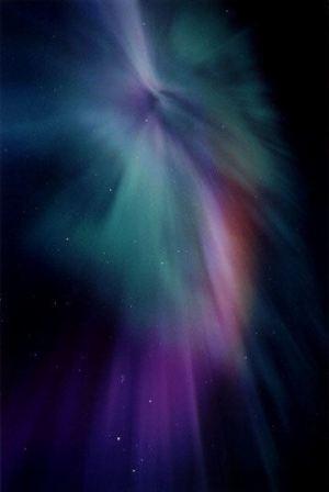 Peacock Aurora - photo by RL.Dietz