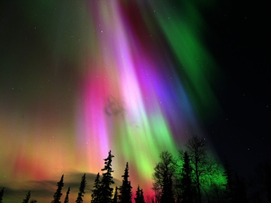 Aurora borealis in Finland - NASA / Peter Rosén