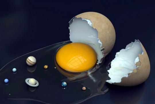 eggzactly