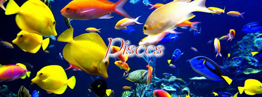 piscesfishes