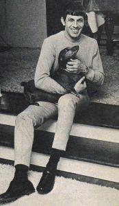 spockanddog