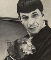 spockanddog2